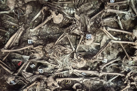 Skeletons in a mass grave